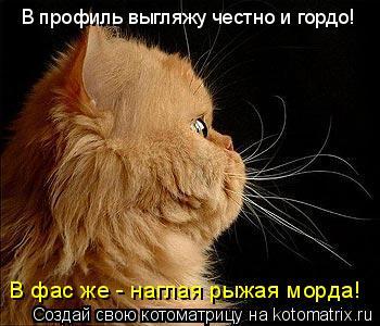 http://kotomatrix.ru/images/lolz/2010/09/29/691507.jpg