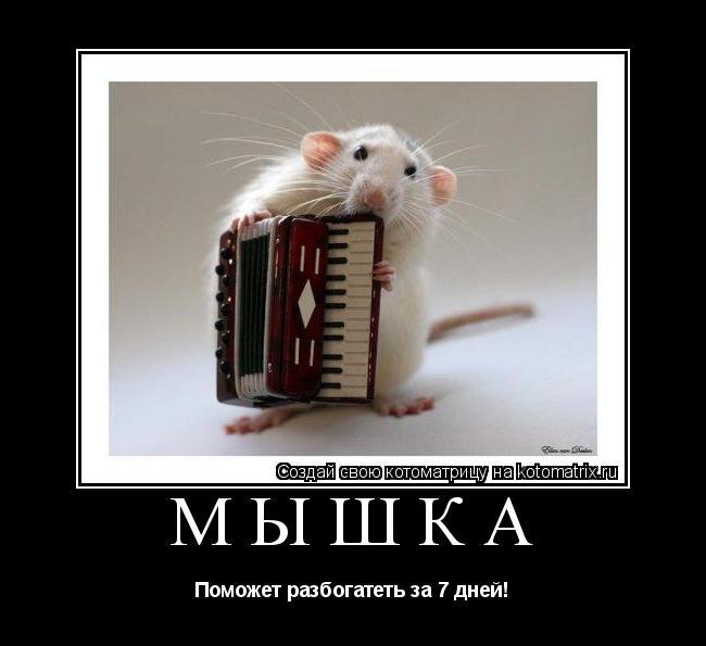 Котоматрица: Мышка Поможет разбогатеть за 7 дней!