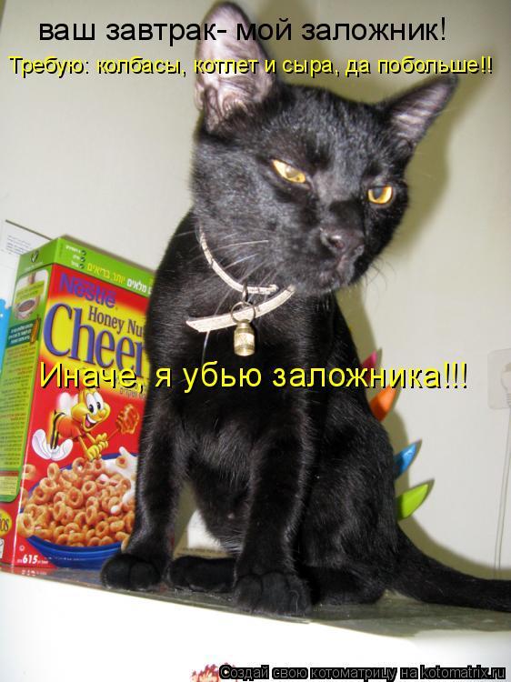 Котоматрица: ваш завтрак- мой заложник! Требую: колбасы, котлет и сыра, да побольше!! Иначе, я убью заложника!!!