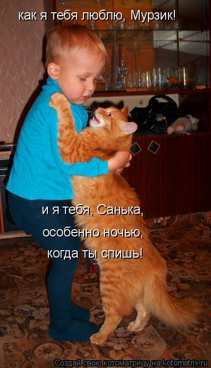 Котоматрица: как я тебя люблю, Мурзик! и я тебя, Санька,  особенно ночью,   когда ты спишь!