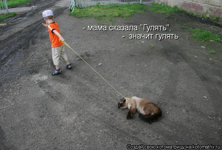 """- мама сказала """"Гулять"""", - значит гулять"""