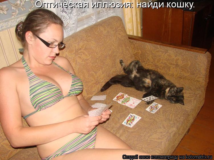 Котоматрица: Оптическая иллюзия: найди кошку.