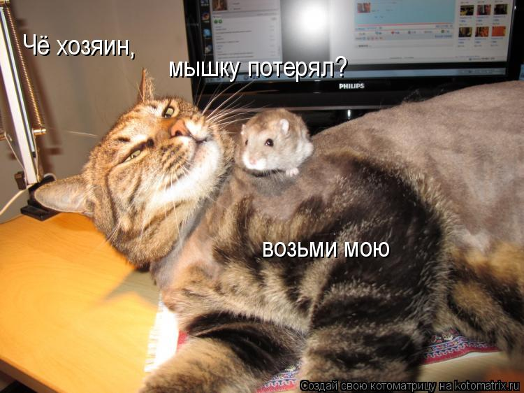 Чё хозяин, мышку потерял? возьми мою