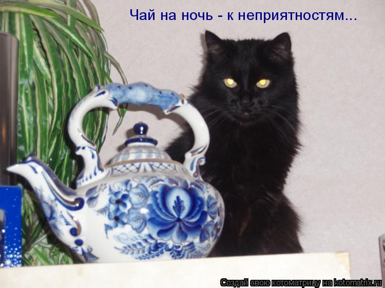 Котоматрица - Чай на ночь - к неприятностям...
