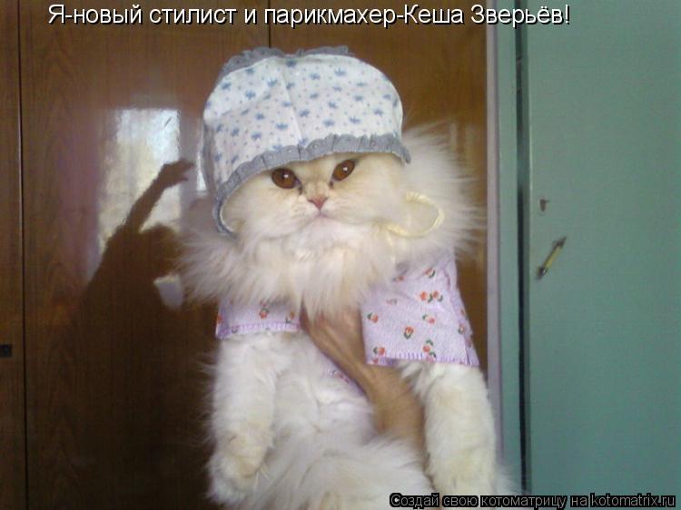 Котоматрица: Я-новый стилист и парикмахер-Кеша Зверьёв!