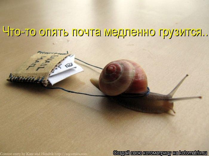 Котоматрица: Что-то опять почта медленно грузится...