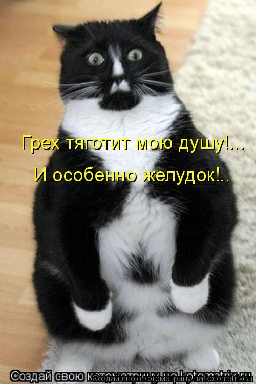 Котоматрица: Грех тяготит мою душу!... И особенно желудок!..