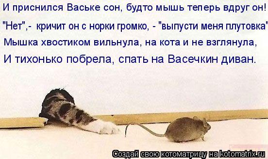 """Котоматрица: И приснился Ваське сон, будто мышь теперь вдруг он! """"Нет"""",-  кричит он с норки громко, - """"выпусти меня плутовка"""". Мышка хвостиком вильнула, на ко"""