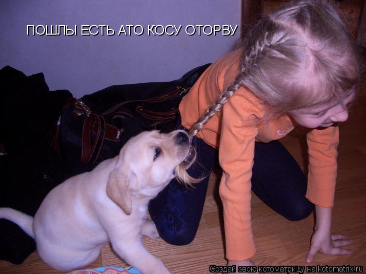 http://kotomatrix.ru/images/lolz/2010/10/02/694176.jpg