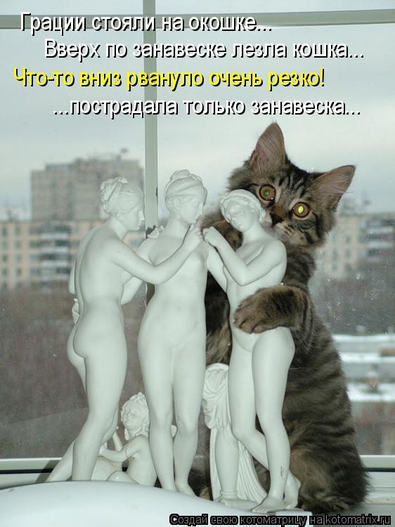 Котоматрица: Грации стояли на окошке... Вверх по занавеске лезла кошка... Что-то вниз рвануло очень резко! ...пострадала только занавеска...