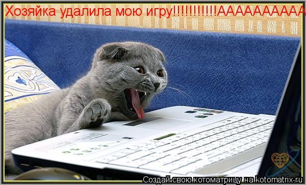 Котоматрица: Хозяйка удалила мою игру!!!!!!!!!!!ААААААААААААААА!!!!