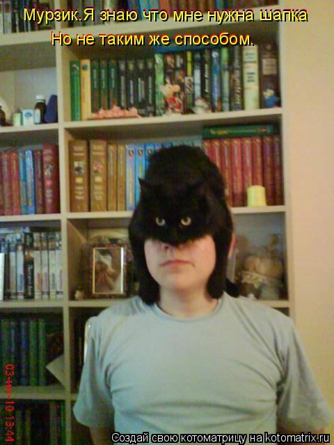 Котоматрица: Мурзик.Я знаю что мне нужна шапка Мурзик.Я знаю что мне нужна шапка Но не таким же способом. Но не таким же способом. Мурзик.Я знаю что мне нуж
