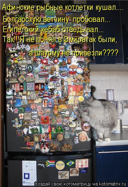 Котоматрица: Афинские рыбные котлетки кушал.... Болгарскую ветчину  пробовал... Египетский кебаб отведывал... Так!!!Я не понял,в Эмиратах были, а шаурму не п