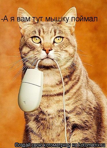 Котоматрица: -А я вам тут мышку поймал