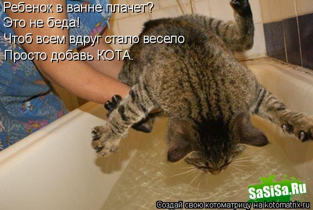 Котоматрица: Ребенок в ванне плачет? Это не беда! Чтоб всем вдруг стало весело Просто добавь КОТА.