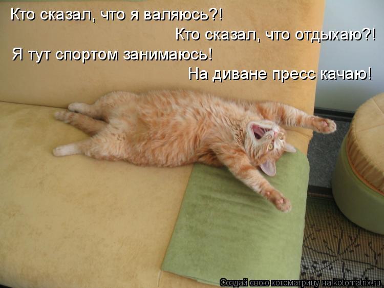 Котоматрица: Кто сказал, что я валяюсь?! Кто сказал, что отдыхаю?! Я тут спортом занимаюсь! На диване пресс качаю!