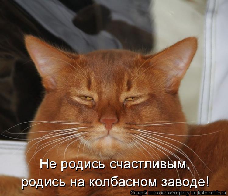Не родись счастливым, родись на колбасном заводе!