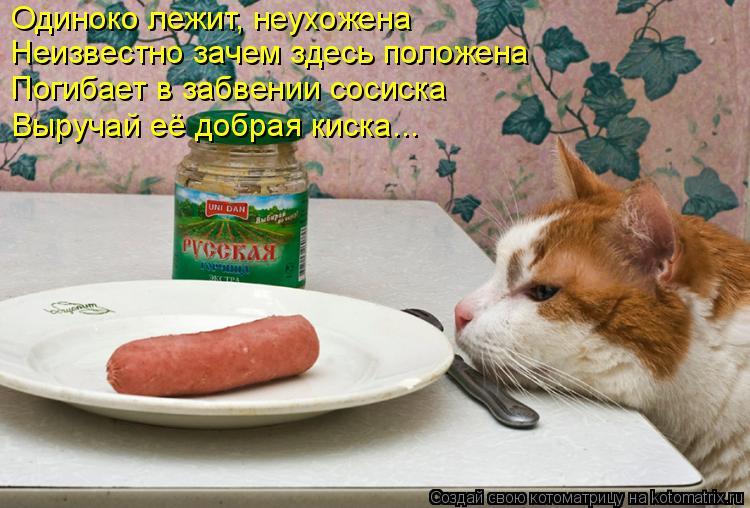 Котоматрица: Одиноко лежит, неухожена Неизвестно зачем здесь положена Погибает в забвении сосиска Выручай её добрая киска...