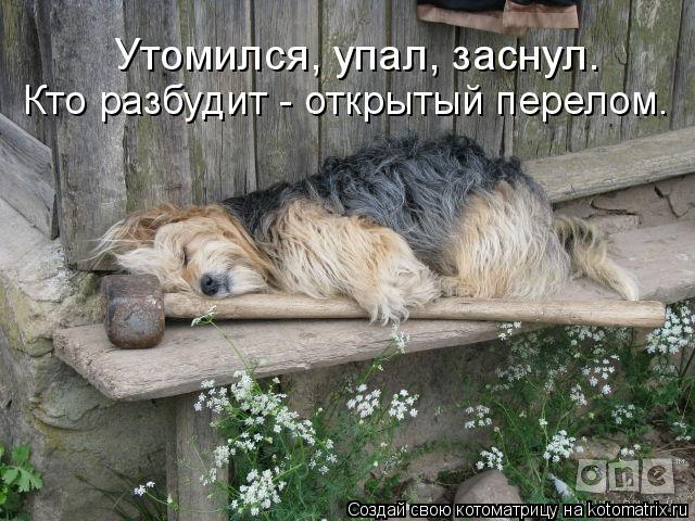 Кто разбудит - открытый перелом. Утомился, упал, заснул.