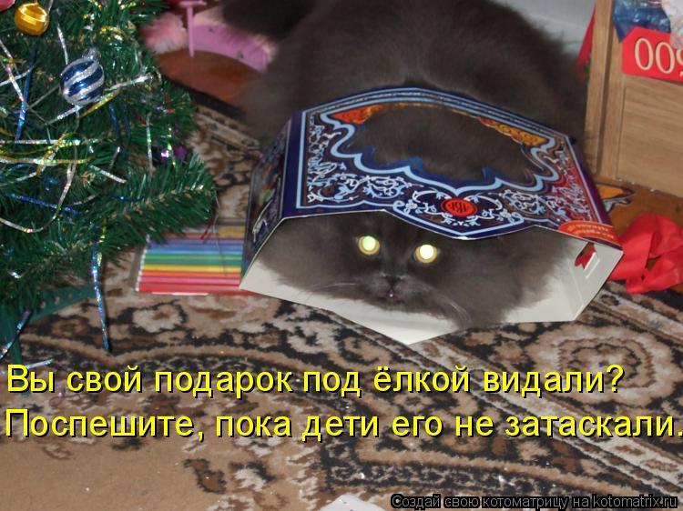 Котоматрица: Вы свой подарок под ёлкой видали? Поспешите, пока дети его не затаскали.