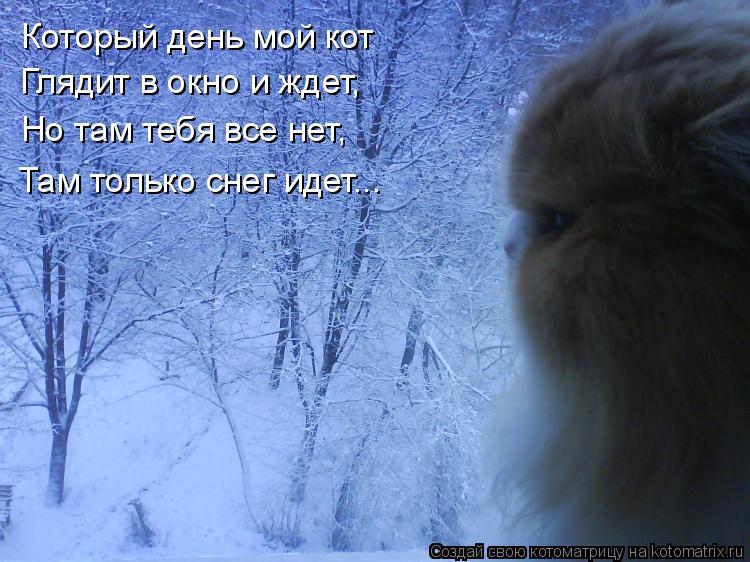Идет день за днем снег