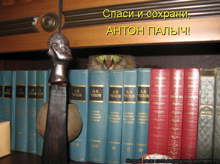 Котоматрица: Спаси и сохрани, АНТОН ПАЛЫЧ!