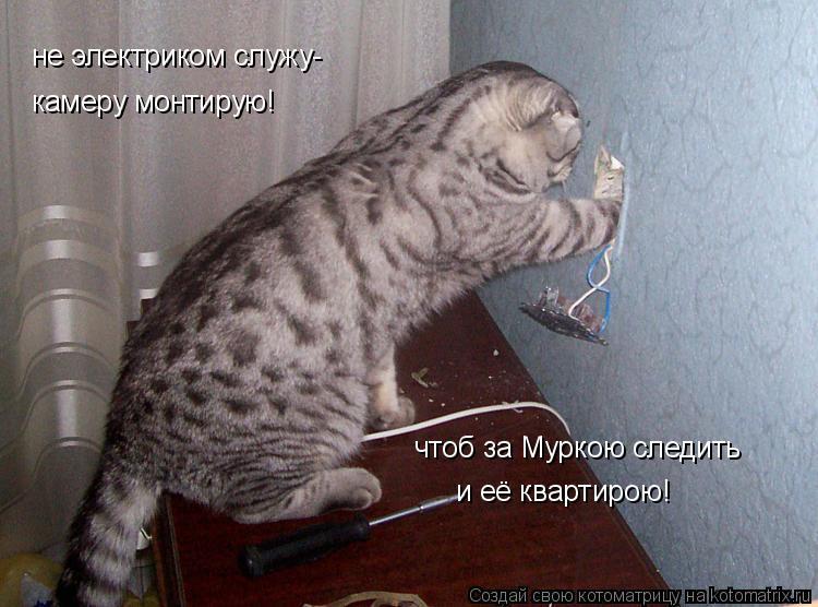 Котоматрица: не электриком служу- камеру монтирую! чтоб за Муркою следить и её квартирою!