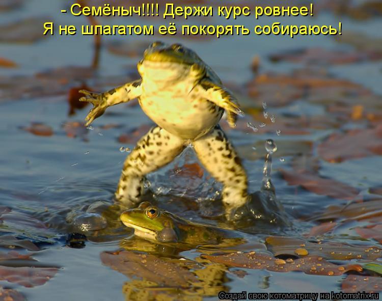 Фото растянутой киски при шпагате 27 фотография
