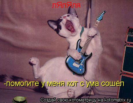 Котоматрица: лЯлЯля  -помогите у меня кот с ума сошёл