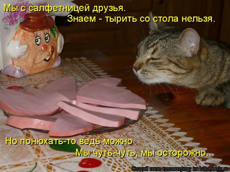 Котоматрица: Мы с салфетницей друзья. Знаем - тырить со стола нельзя. Но понюхать-то ведь можно Мы чуть-чуть, мы осторожно...