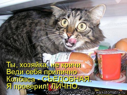 Котоматрица: Ты, хозяйка, не кричи Веди себя прилично Колбаса - СЪЕДОБНАЯ. Я проверил! ЛИЧНО.