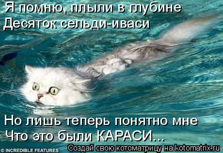 Котоматрица: Я помню, плыли в глубине Десяток сельди-иваси Но лишь теперь понятно мне Что это были КАРАСИ...