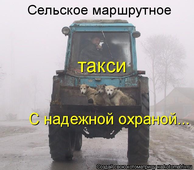 Котоматрица: Сельское маршрутное такси С надежной охраной...
