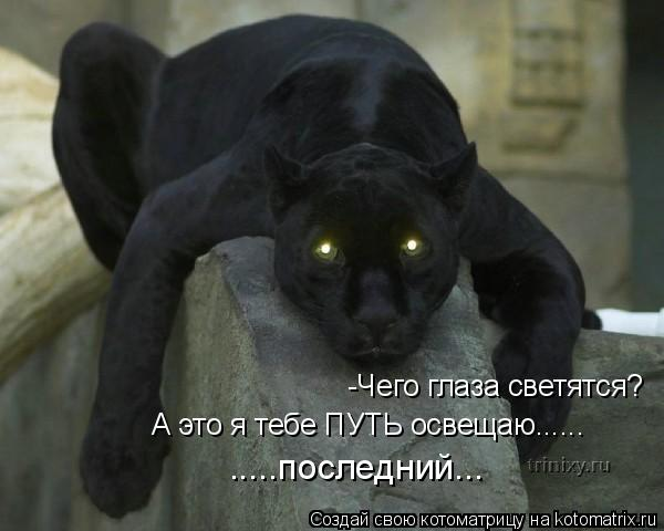 Котоматрица: -Чего глаза светятся? А это я тебе ПУТЬ освещаю...... .....последний...
