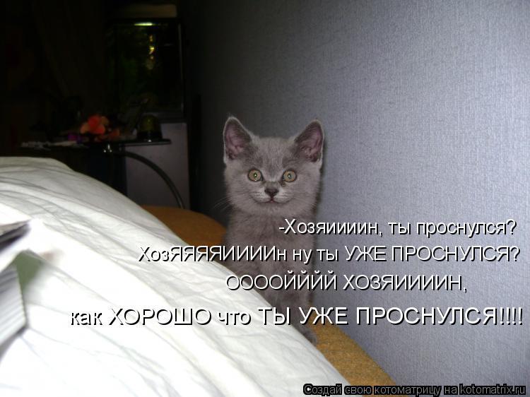 Котоматрица: -Хозяиииин, ты проснулся? ХозЯЯЯЯИИИИн ну ты УЖЕ ПРОСНУЛСЯ? ООООЙЙЙЙ ХОЗЯИИИИН,  как ХОРОШО что ТЫ УЖЕ ПРОСНУЛСЯ!!!!