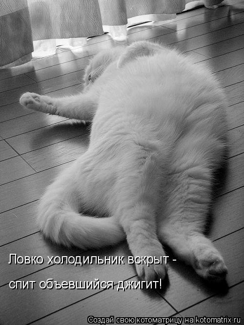 Котоматрица: Ловко холодильник вскрыт - спит объевшийся джигит!