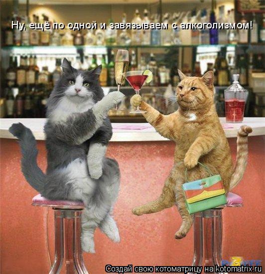 Котоматрица: Ну, ещё по одной и завязываем с алкоголизмом!