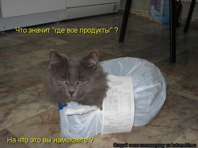"""Котоматрица: Что значит """"где все продукты"""" ? На что это вы намекаете ?"""