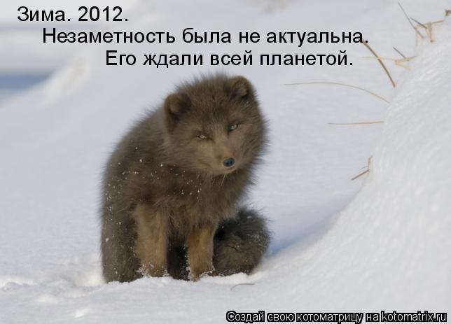 Котоматрица: Зима. 2012. Незаметность была не актуальна. Его ждали всей планетой.