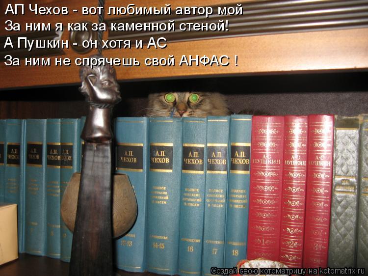 Котоматрица: АП Чехов - вот любимый автор мой За ним я как за каменной стеной! А Пушкин - он хотя и АС За ним не спрячешь свой АНФАС !