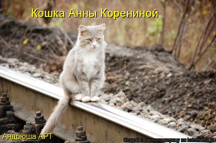Котоматрица: Кошка Анны Корениной Андрюша АРТ