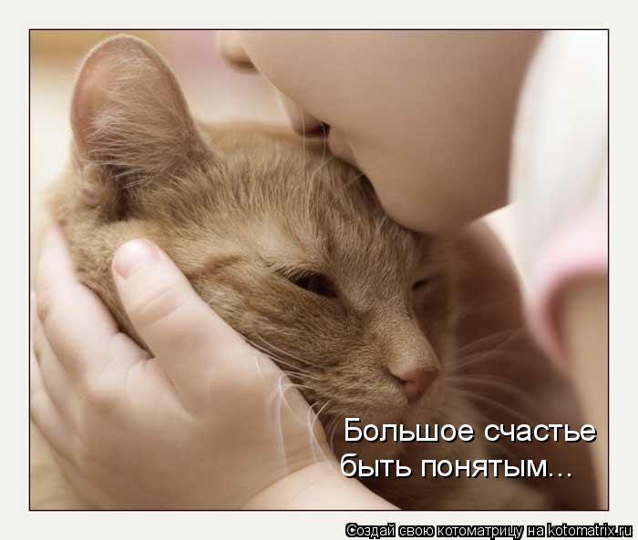 Котоматрица: Большое счастье быть понятым...