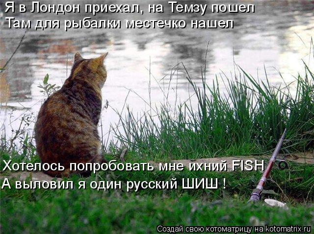Котоматрица: Я в Лондон приехал, на Темзу пошел Там для рыбалки местечко нашел Хотелось попробовать мне ихний FISH А выловил я один русский ШИШ !