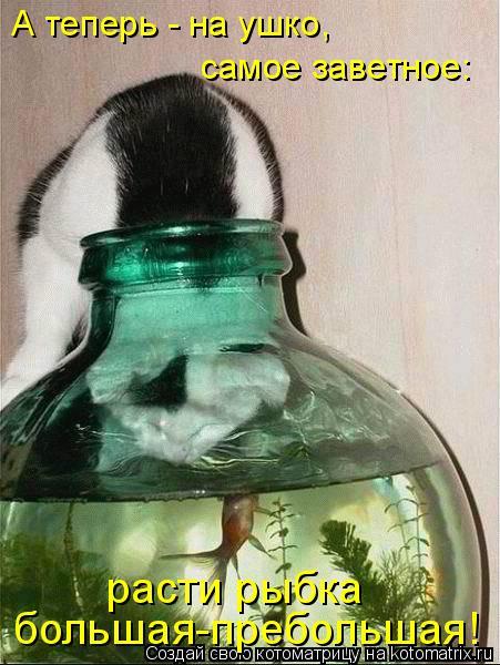 А теперь - на ушко,  самое заветное: расти рыбка  большая-пребольшая!