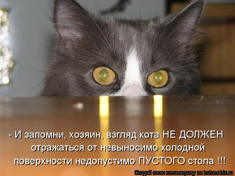 - И запомни, хозяин, взгляд кота НЕ ДОЛЖЕН отражаться от невыносимо хо