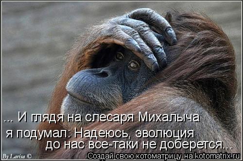Котоматрица: я подумал: Надеюсь, эволюция  до нас все-таки не доберется... ... И глядя на слесаря Михалыча