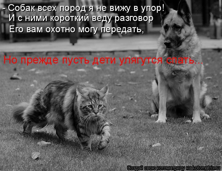 Котоматрица: - Собак всех пород я не вижу в упор! И с ними короткий веду разговор  Его вам охотно могу передать, Но прежде пусть дети улягутся спать...