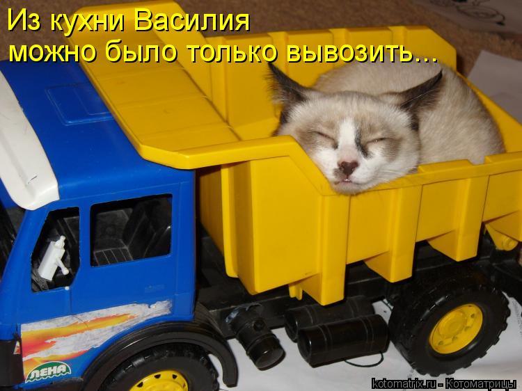 Из кухни Василия  можно было только вывозить...