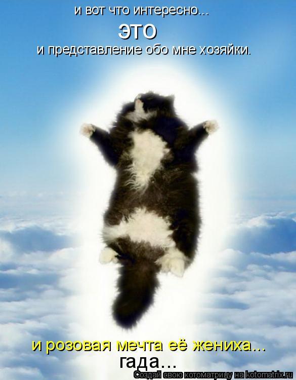 http://kotomatrix.ru/images/lolz/2010/10/13/704604.jpg
