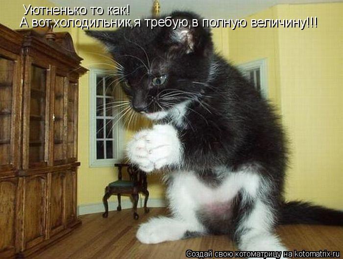 Котоматрица: Уютненько то как! А вот,холодильник,я требую,в полную величину!!!
